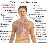 Снижение гемоглобина симптомы – Причины низкого гемоглобина, последствия и лечение у взрослых и детей