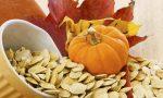 Польза от тыквенных семечек для человека – польза и вред для организма. Как принимать
